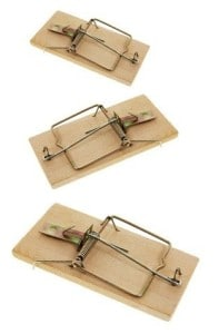 3 old fashioned wooden mouse traps