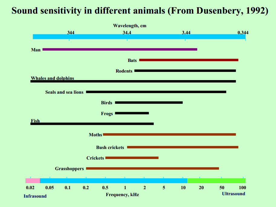 Sound Sensitivity Chart in different animals