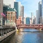 Pest control issues in Chicago