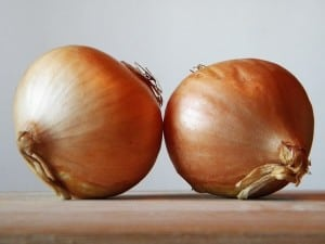 A little known home remedy is using onions to keep the mice out