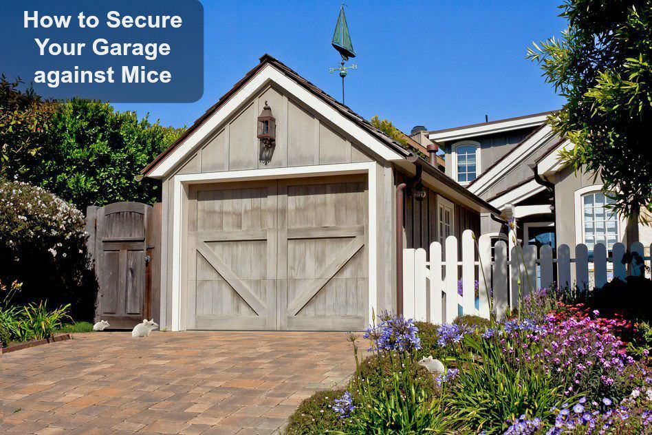 how to keep the mice out of the garage