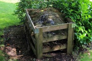 keep compost clean