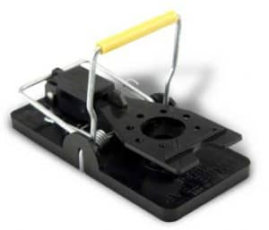 The Best Mouse Traps - Find the Most Effective Mouse Trap Types