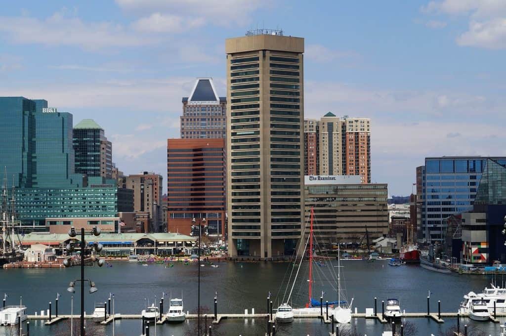 view of the baltimore city from the harbor