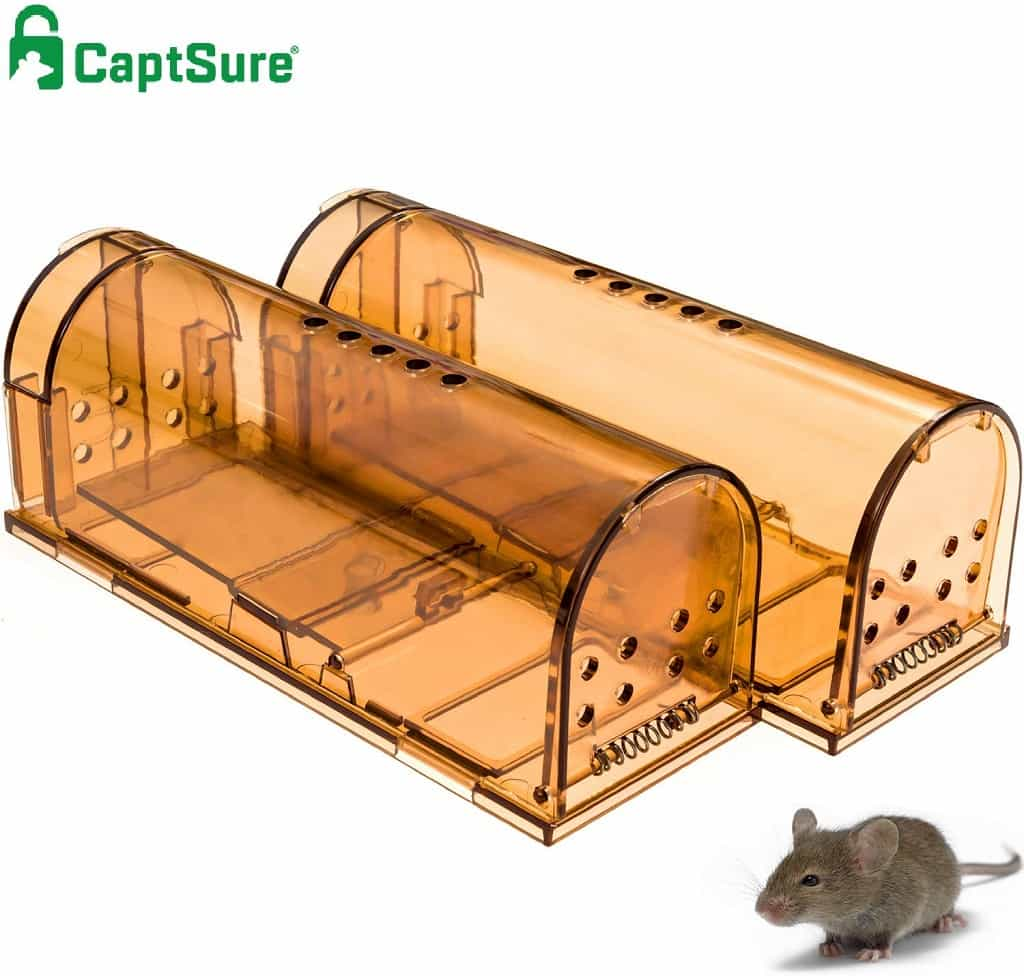 2 CaptSure catch & release rodent traps with small mouse in front