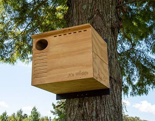 Large Owl nesting box by JCs Wildlife